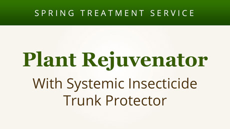 Plant Rejuvenator with Systemic Insecticide Trunk Protector